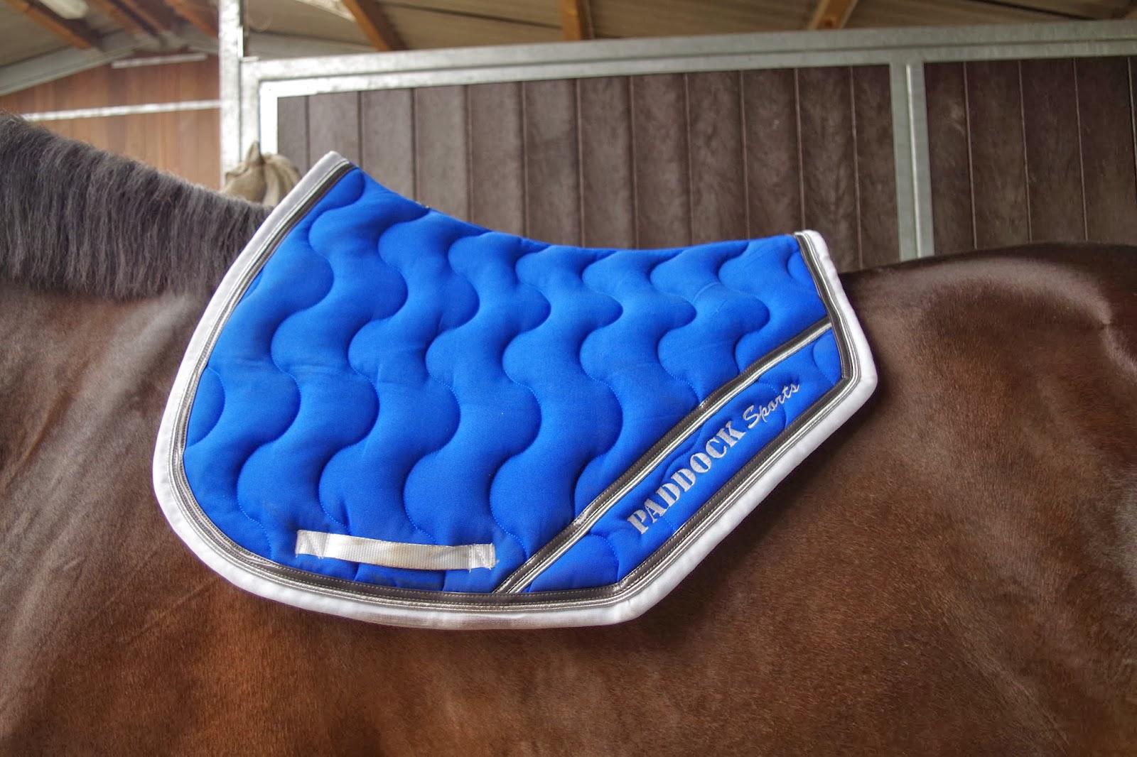 mon tapis paddock je vais en parler mon cheval. Black Bedroom Furniture Sets. Home Design Ideas